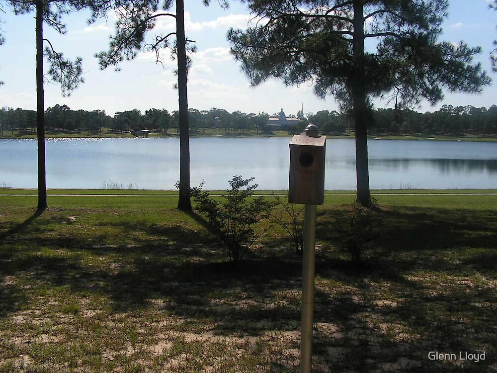 Lake Defuniak  by Glenn Lloyd
