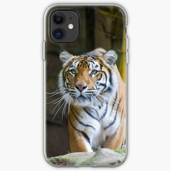 Tiger iPhone Soft Case