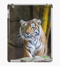 Tiger iPad Case/Skin