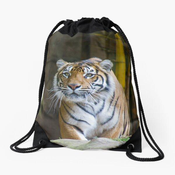 Tiger Drawstring Bag