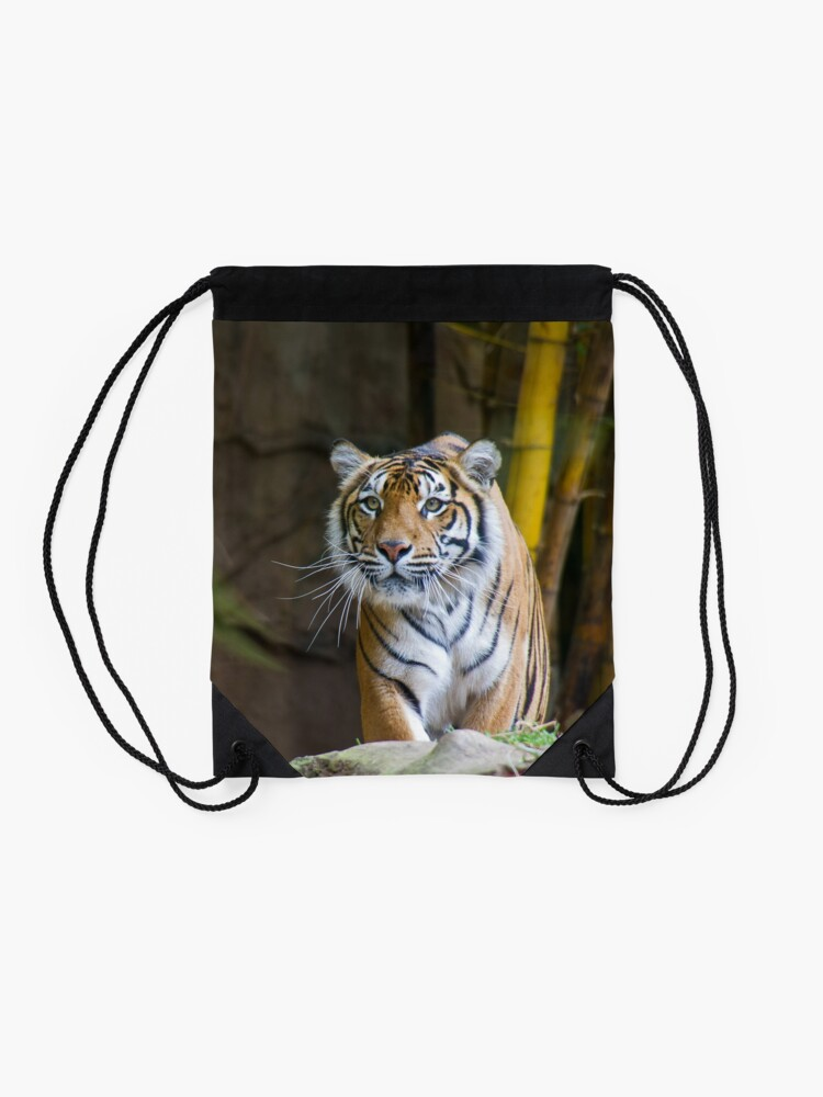 Alternate view of Tiger Drawstring Bag