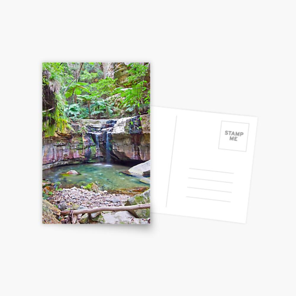 The Moss Gardens II Postcard