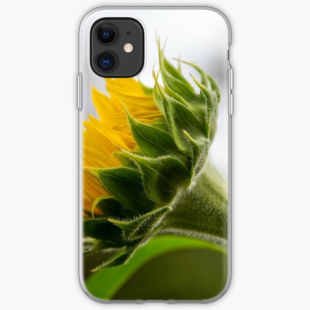 Seeking The Sun iPhone Case & Cover