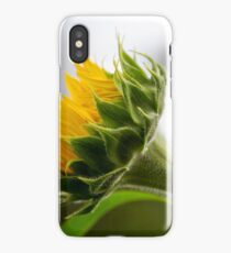 Seeking The Sun iPhone Case