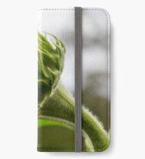Seeking The Sun iPhone Wallet/Case/Skin