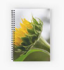 Seeking The Sun Spiral Notebook