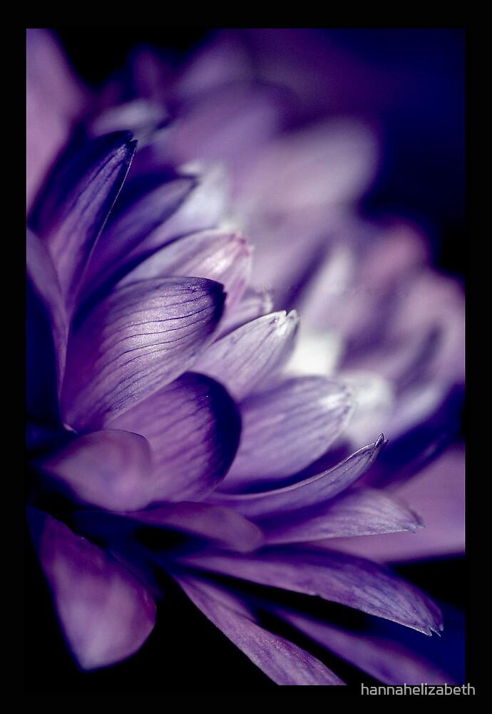 Purple by hannahelizabeth