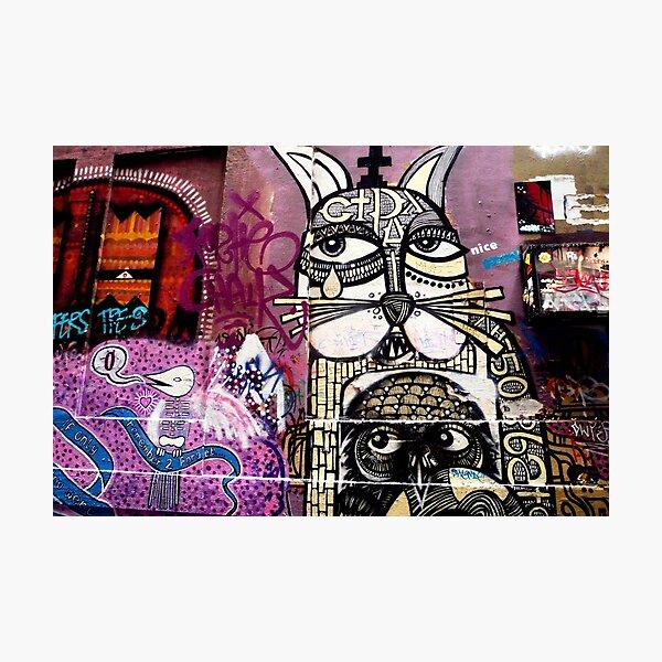 Cat Graffiti Photographic Print