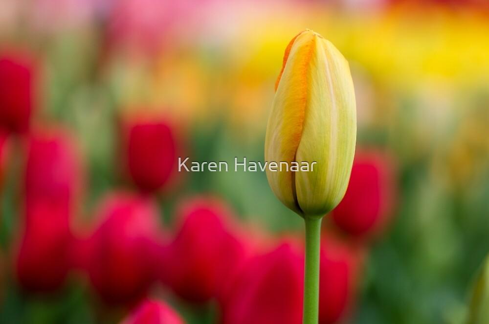 Standing Proud by Karen Havenaar