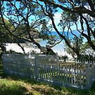 S.S. Wairarapa grave site...........!! by Roy  Massicks