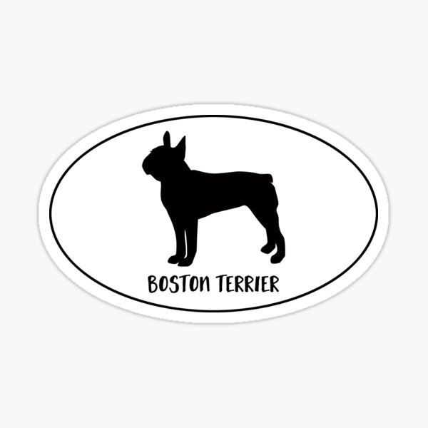 Boston Terrier Dog Breed Classic Black Silhouette in Oval Sticker
