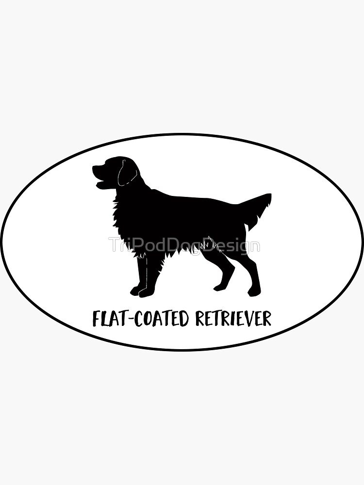 Flat-Coated Retriever Dog Breed Classic Black Silhouette in Oval by TriPodDogDesign