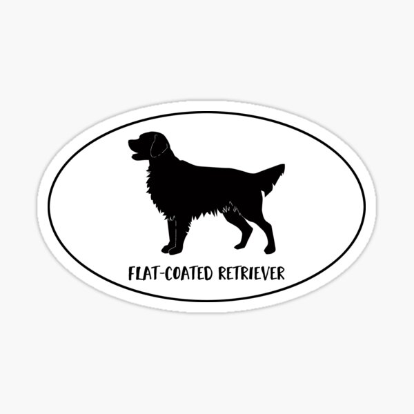Flat-Coated Retriever Dog Breed Classic Black Silhouette in Oval Sticker