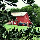 """""""Red Barn Through The Green Foliage""""... prints and products by © Bob Hall"""