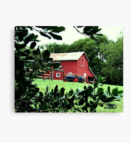 """Red Barn Through The Green Foliage""... prints and products Canvas Print"