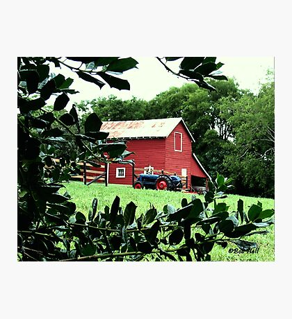 """""""Red Barn Through The Green Foliage""""... prints and products Photographic Print"""