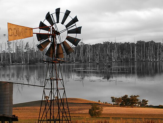 The Drought by rossco