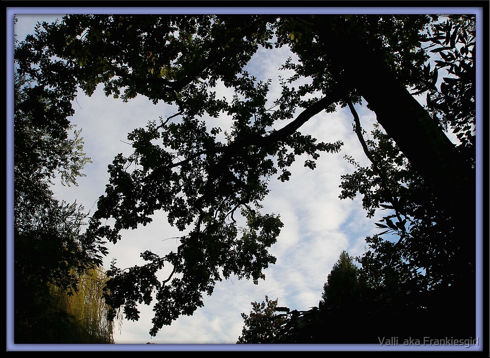 Heaven's Above by Valli  aka Frankiesgirl