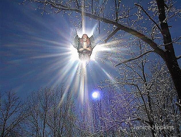 Snow Angel by Janice Hopkins