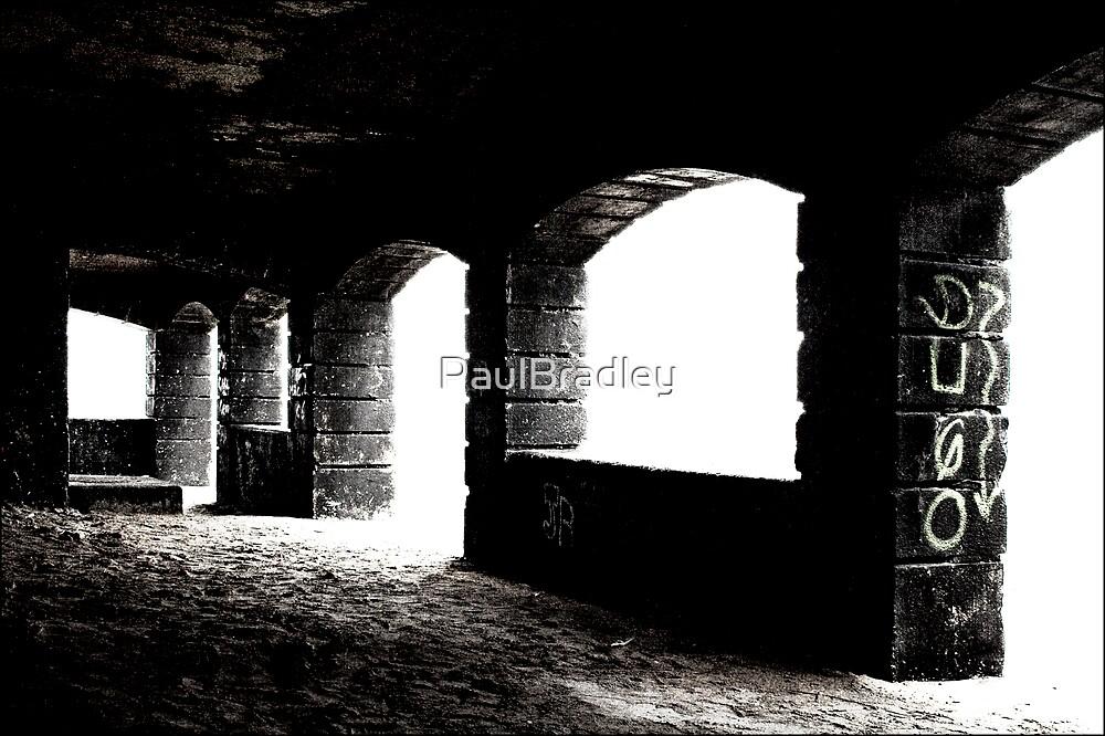 Toward the Light by PaulBradley