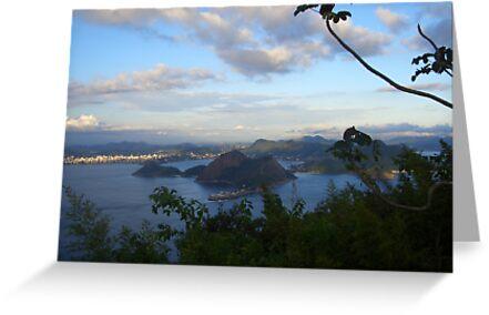 Rio  by Ruth  Kennedy