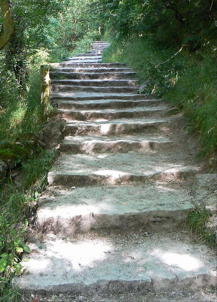 Take a walk by Michael Barber4