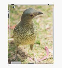 Female Bowerbird iPad Case/Skin