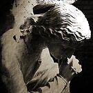 The Angel by Jaime Hernandez