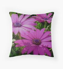 Purple And Pink Tropical Daisy Flower Throw Pillow