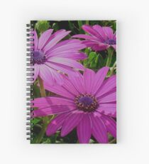 Purple And Pink Tropical Daisy Flower Spiral Notebook