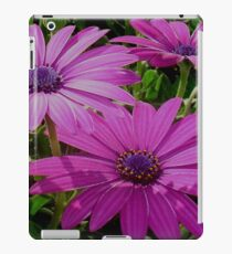 Purple And Pink Tropical Daisy Flower iPad Case/Skin