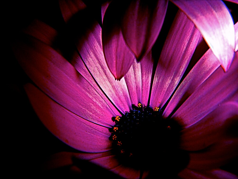 Into Darkness by diongillard