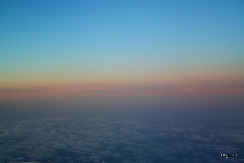 Early Morning Flight by organic