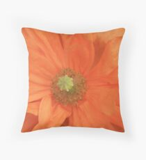 Peach Delight III Throw Pillow