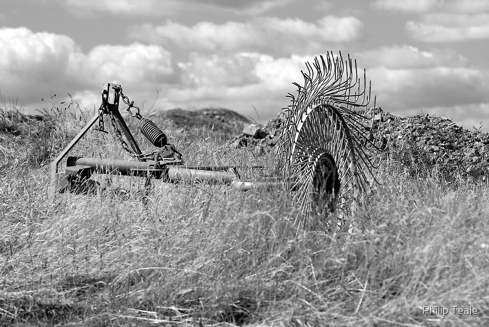 Hay Rake by Philip Teale