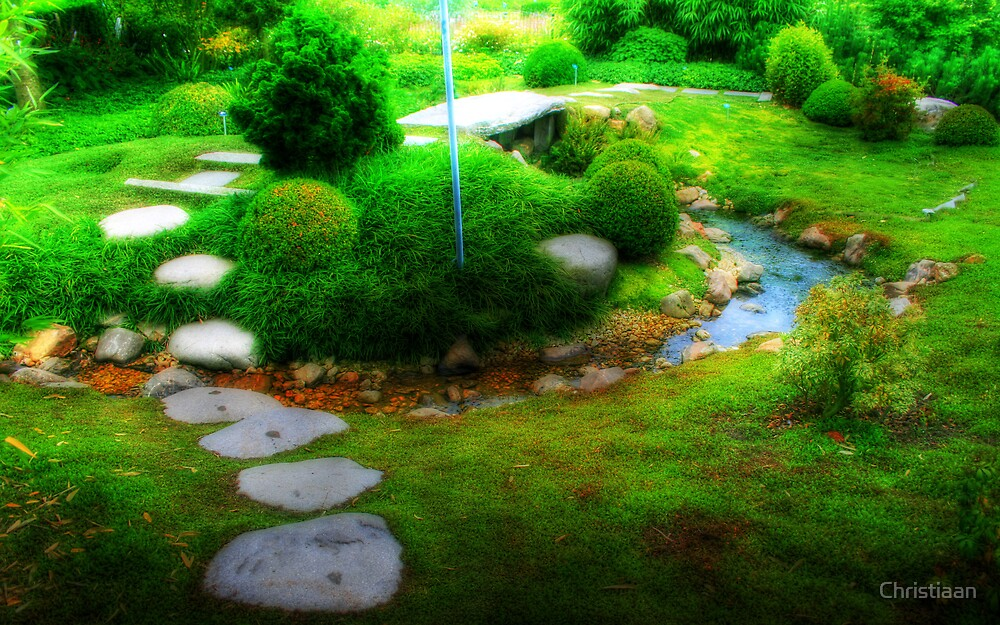 Chinese Garden by Christiaan