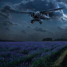 RAF Lysander on secret operation by Gary Eason