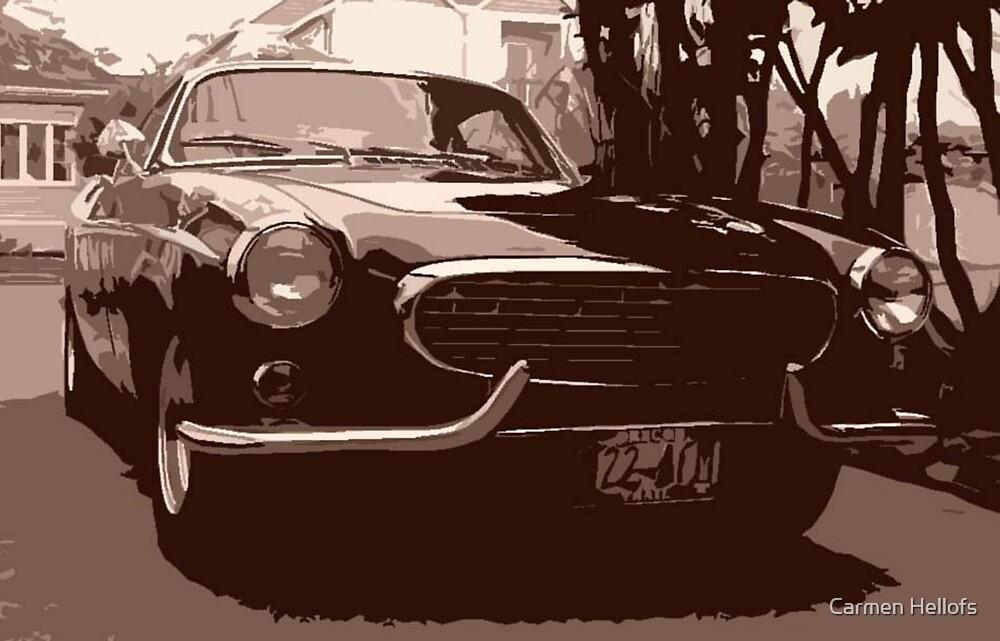 My Brother's Volvo by Carmen Hellofs