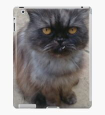 Goofy Cat iPad Case/Skin