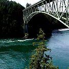 Täuschung-Durchlauf-Brücke, WA, USA von JCDesignsUK