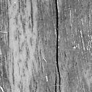 wood grey  by Boxzero