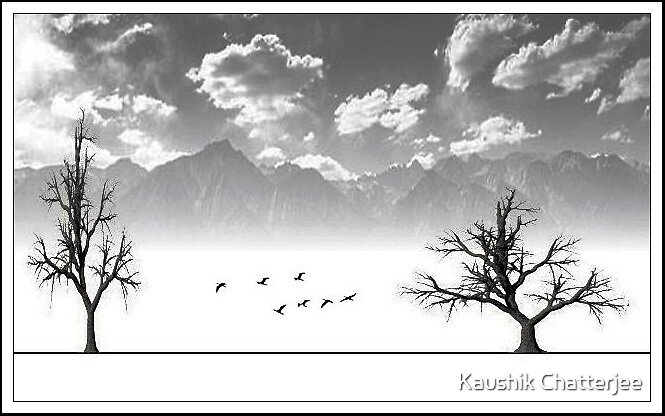 Trees by Kaushik Chatterjee