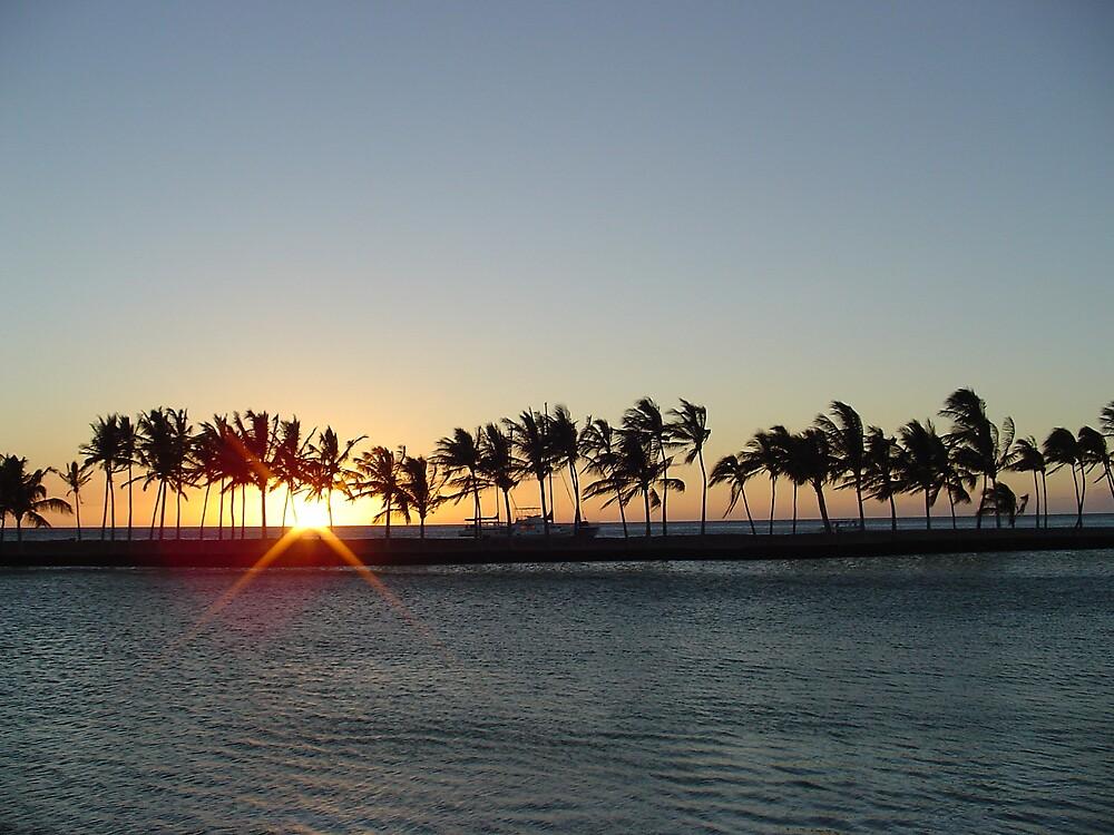 Big Island Sunset by Brian Robertson