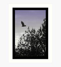 Free Flying Art Print