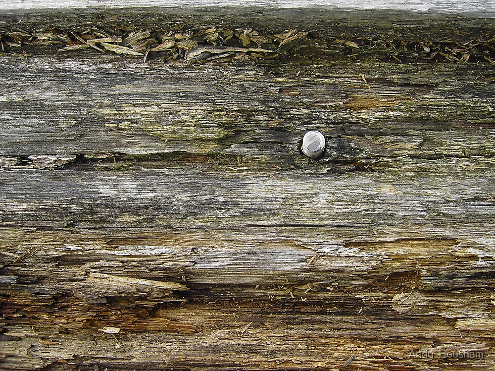Old wood textures by Andy  Housham