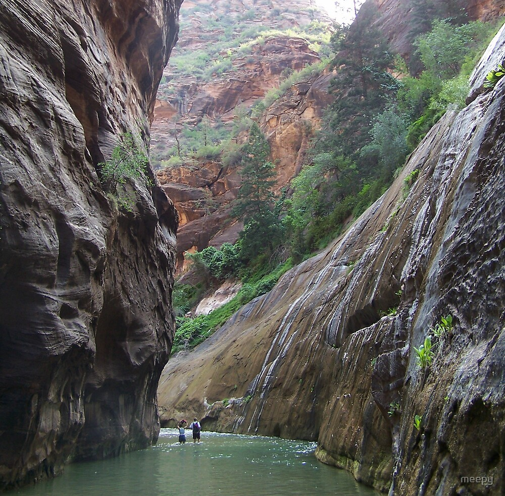 The Narrows at Zion National Park by meepy