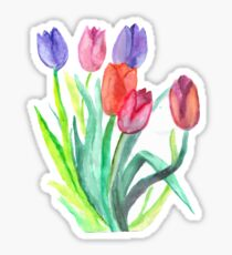 Watercolor Tulips Sticker