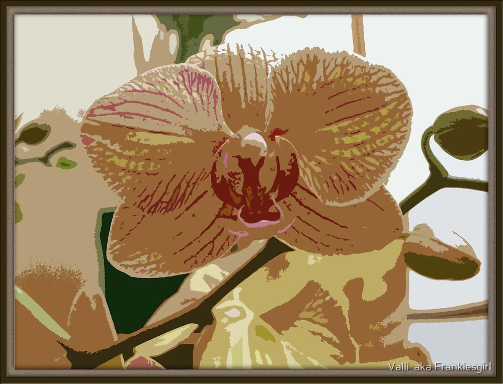Orchid Variation by Valli  aka Frankiesgirl