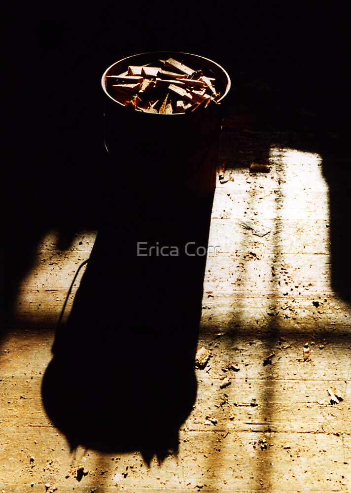 Bucket of Chips by Erica Corr