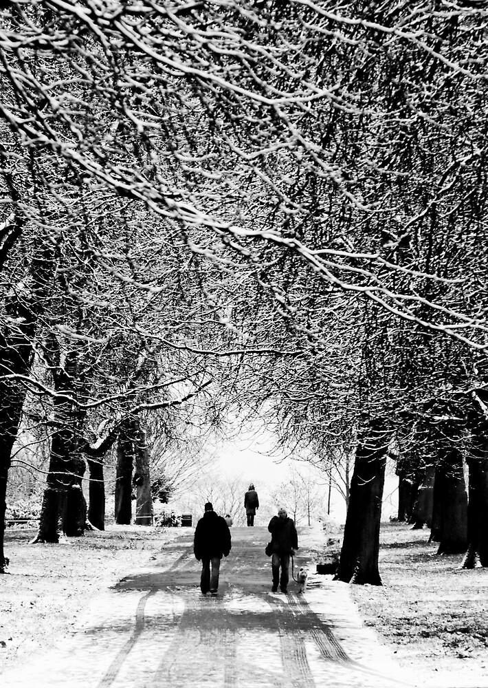 Winters Walking by AidanW